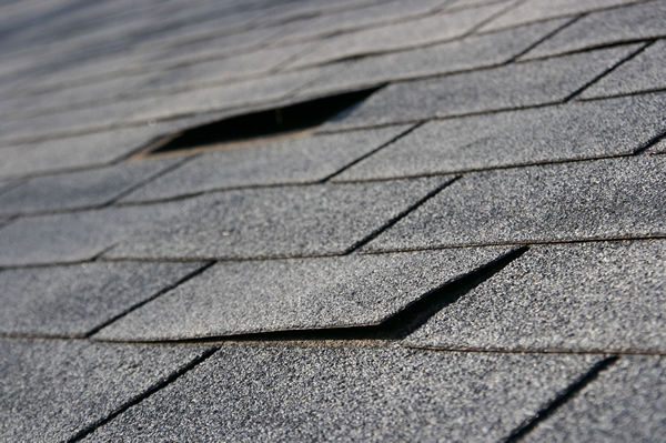 Asphalt roofing shingles damaged by a storm