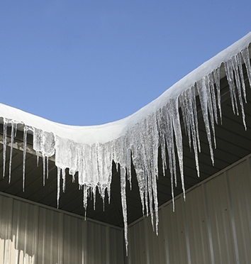 Icicles hanging from an ice dam in the gutter